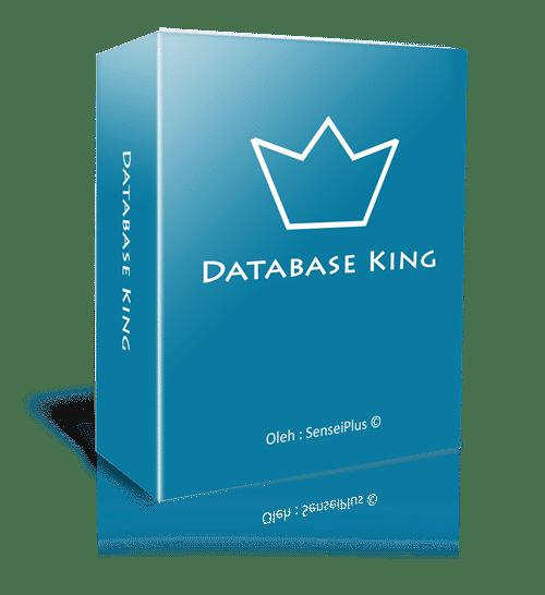 Database King